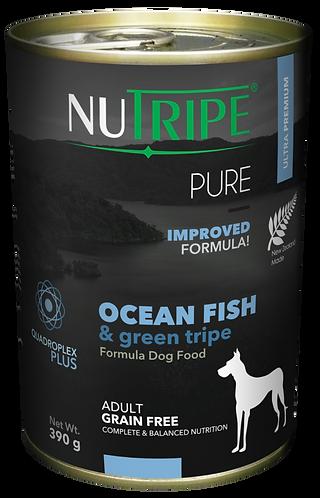 PURE OCEAN FISH & GREEN TRIPE FORMULA DOG FOOD
