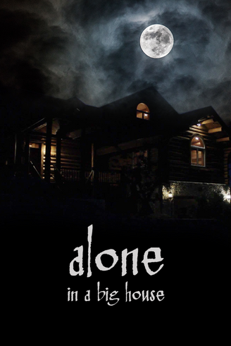 Alone in a big house poster.png