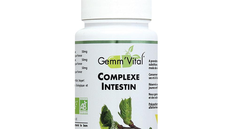 Complexe Intestin Gemm'Vital- -60 gélules végétales