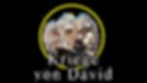 david's (german)_00000.png