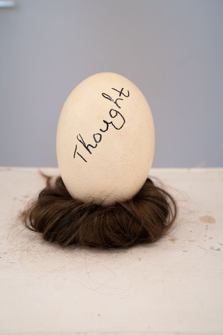 'The birth of thought', egg_ hair