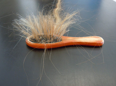 `Brushing out thought`-hair and brush
