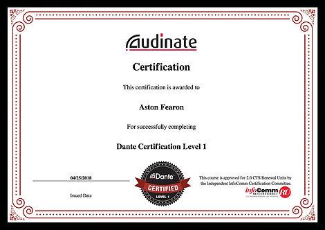 Aston Fearon- Dante Level 1 Certificate.