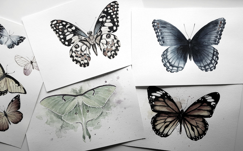 Watercolor butterfly workshop Utrecht