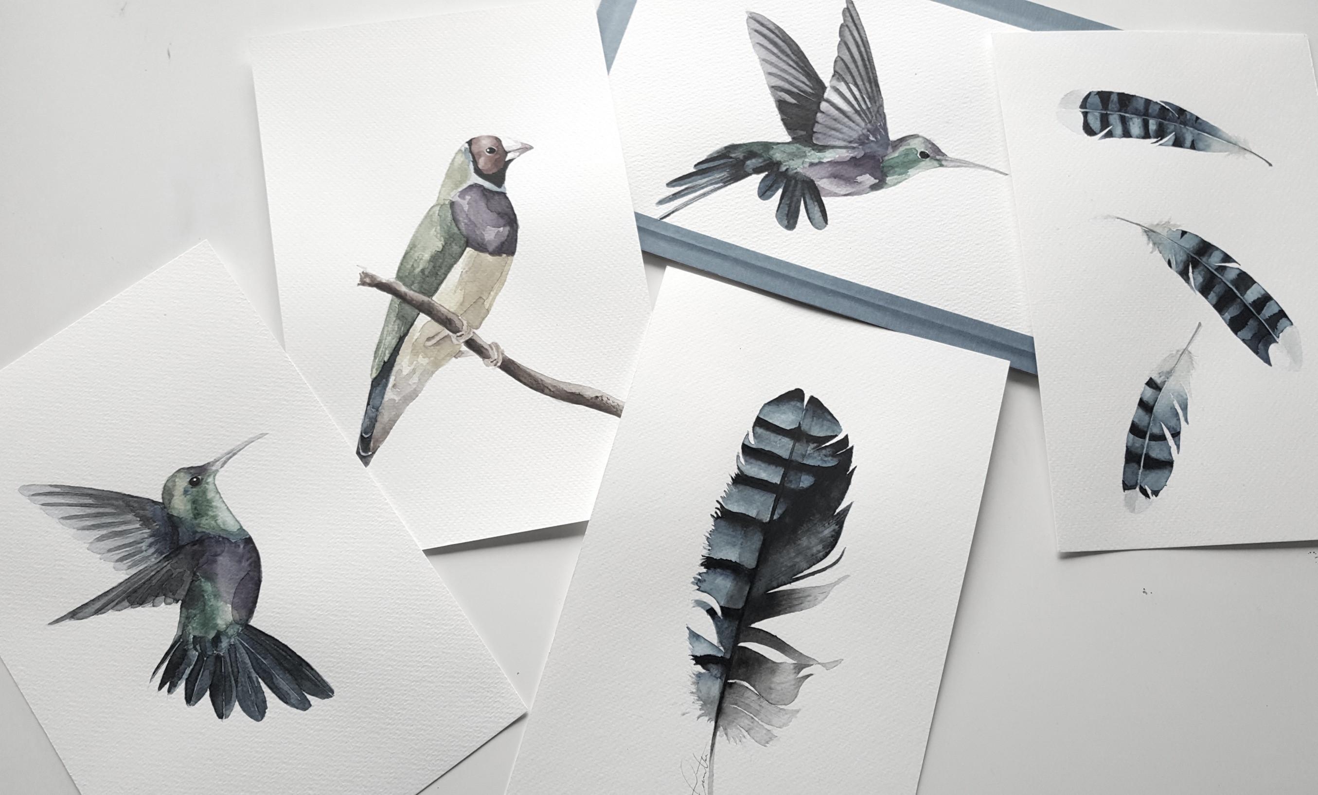 Birds watercolor workshop Utrecht