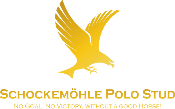 Schockemohle-Polo-Stud-Gold.png