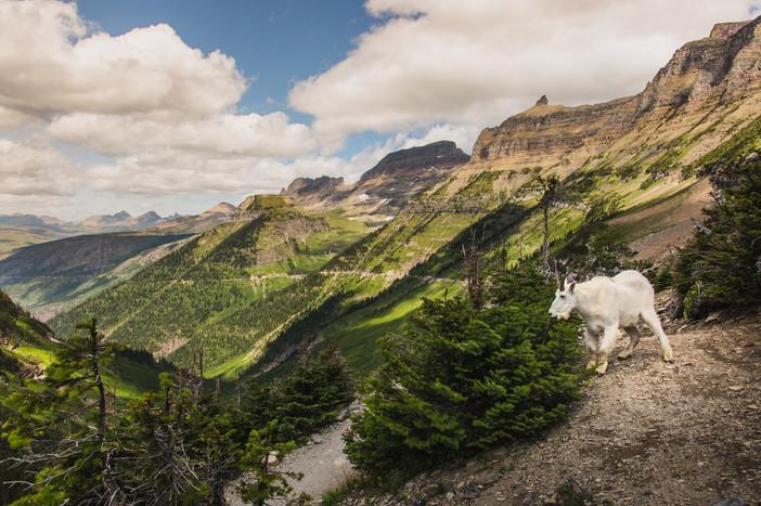 Montana-39.jpg