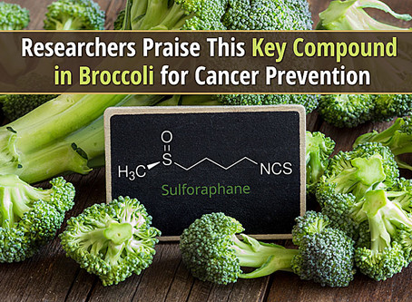 The Sulforaphane Cancer Study Your Doctor most likely hasn't told you about....