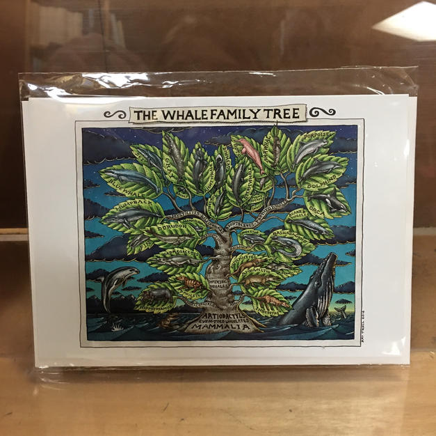 Whale Family Tree - Pomegranate