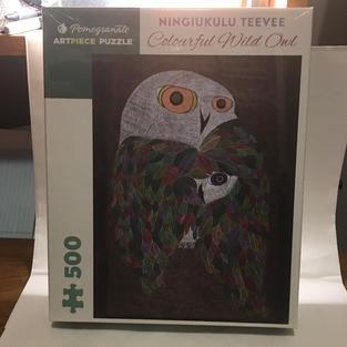 Colourful Wild Owl - Ningiukulu Teevee