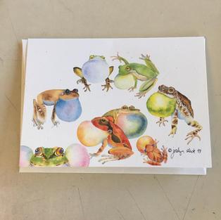 Singing Frogs - Crane Creek