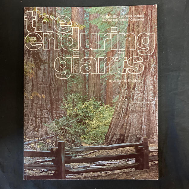 The Enduring Giants by Joseph H Engbeck Jr
