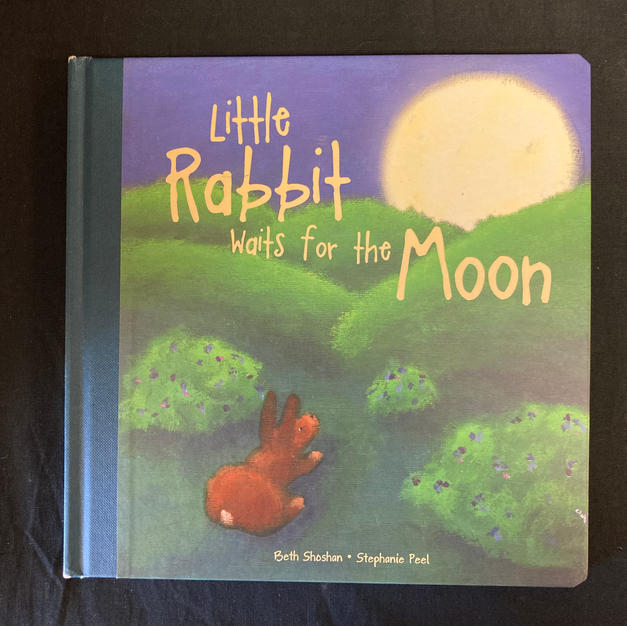 Little Rabbit Waits for the Moon by Betty Shoshan