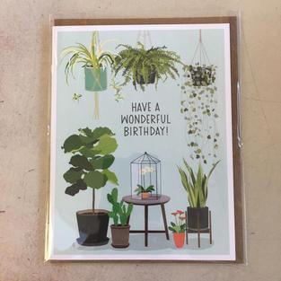 Plant Birthday - Apartment 2