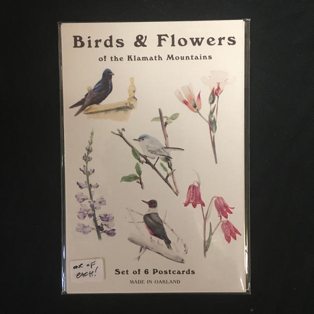 Birds & Flowers - Alex Harris