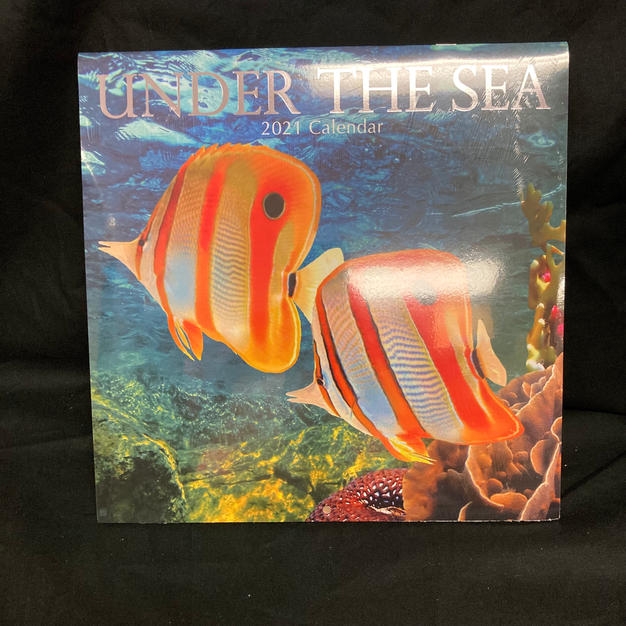 2021 Wall Calendar - Under the Sea