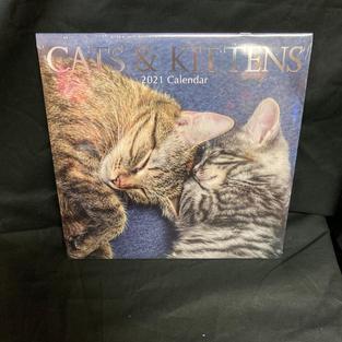 2021 Wall Calendar - Cats & Kittens