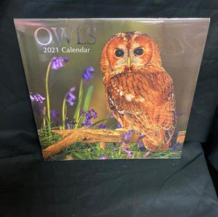 2021 Wall Calendar - Owls