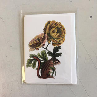 Chipmunk Mini Card - P Flynn