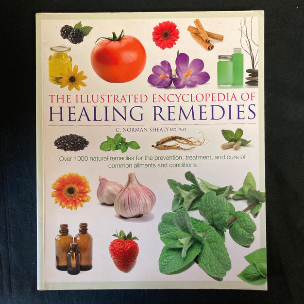 The Illustrated Encyclopedia of Healing Remedies by C Norman Shealy