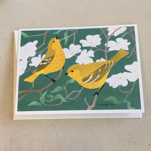 Yellow Warblers - Crane Creek