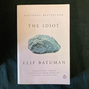 The Idiot - Elif Batuman