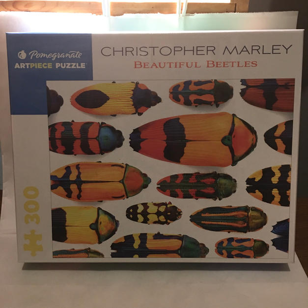 Beautiful Beetles - Christopher Marley
