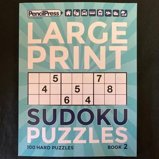 Large Print Sudoku Puzzles Book 2