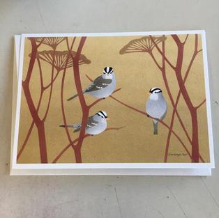 White-Crowned Sparrows - Crane Creek