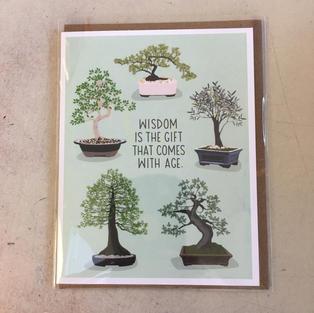 Wisdom Bonsai Birthday - Apartment 2