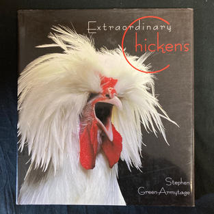 Extraordinary Chickens by Stephen Green-Armytage