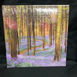 2021 Wall Calendar - Woodland Scenes