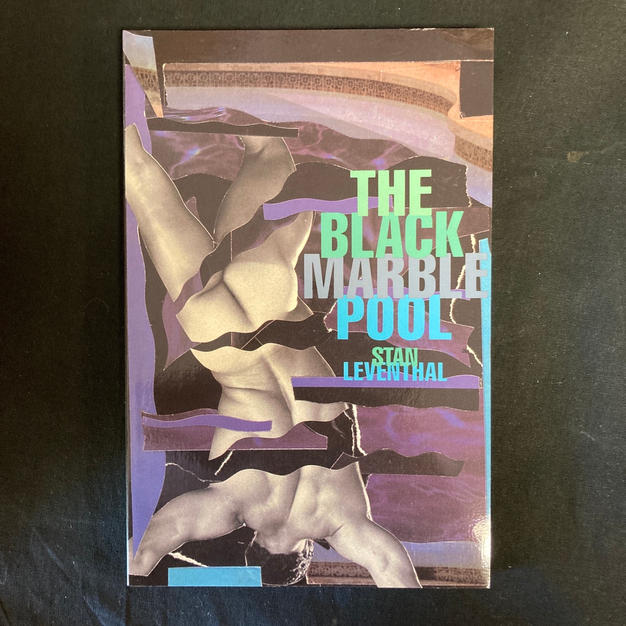 The Black Marble Pool by Stan Leventhal