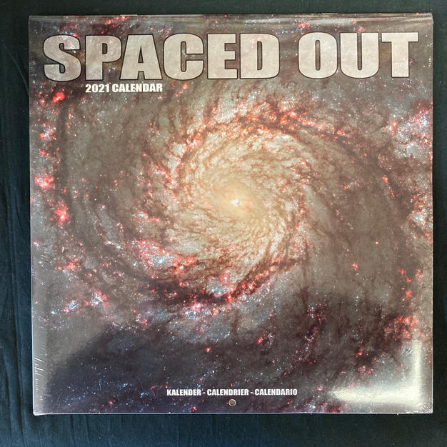 Spaced Out 2021 Wall Calendar