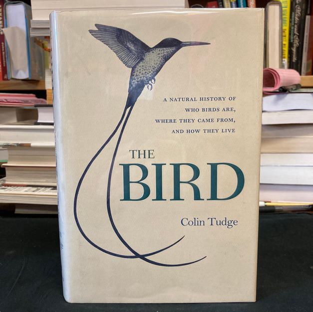 The Bird by Colin Tudge