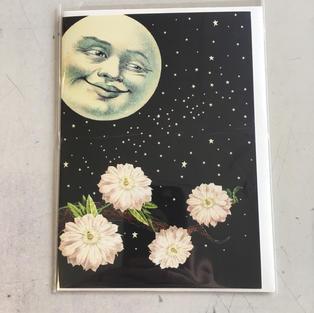 Moon Flowers - P Flynn