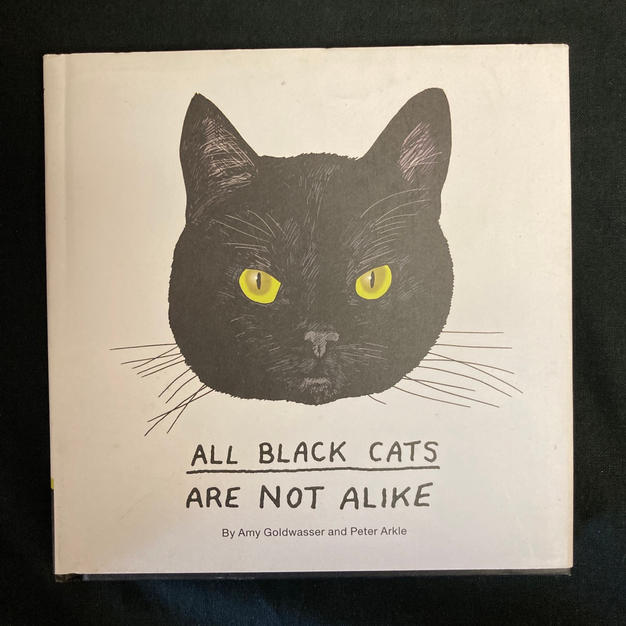 All Black Cats are Not Alike by Amy Goldwater and Peter Arkle