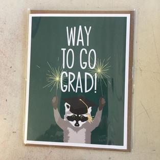 Raccoon Grad - Apartment 2