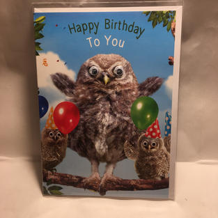 Owl Party Googly Eye Birthday - 4.00