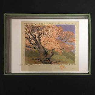 Bishop's Apricot - Gustave Baumann