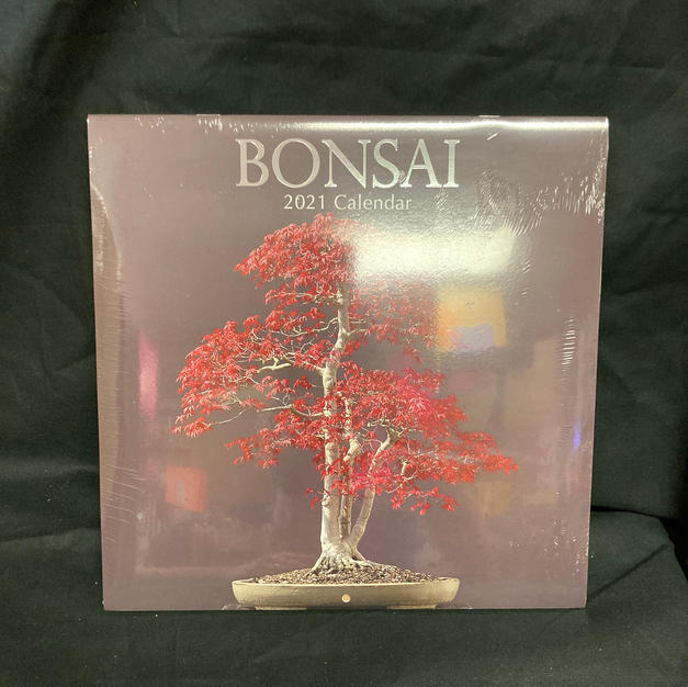 2021 Wall Calendar - Bonsai