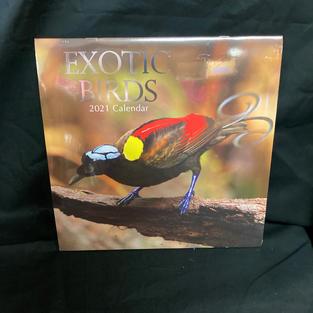 2021 Wall Calendar - Exotic Birds