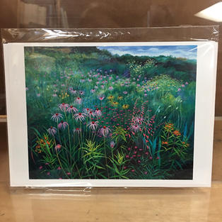Prairie Meadow with Echinacea - Pomegranate