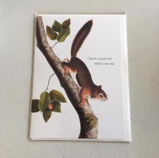A Good Nut Seen Anniversary / Love - P Flynn