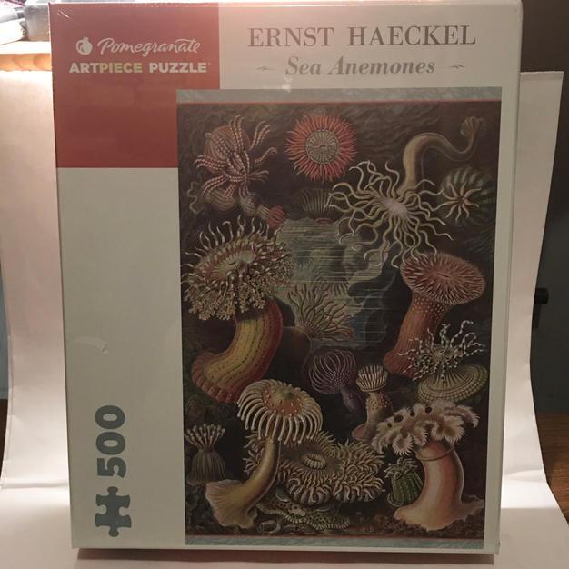 Sea Anemones - Ernst Haeckel