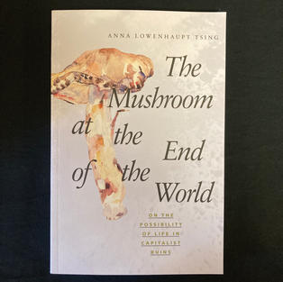 The Mushroom at the End of the World by Anna Lowenhaupt Tsing
