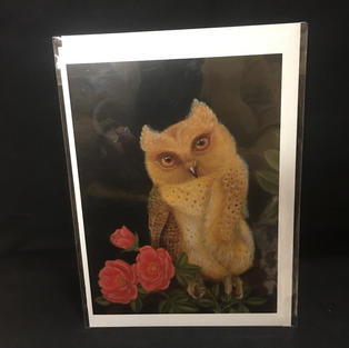 Owl with Roses at Night - Pomegranate