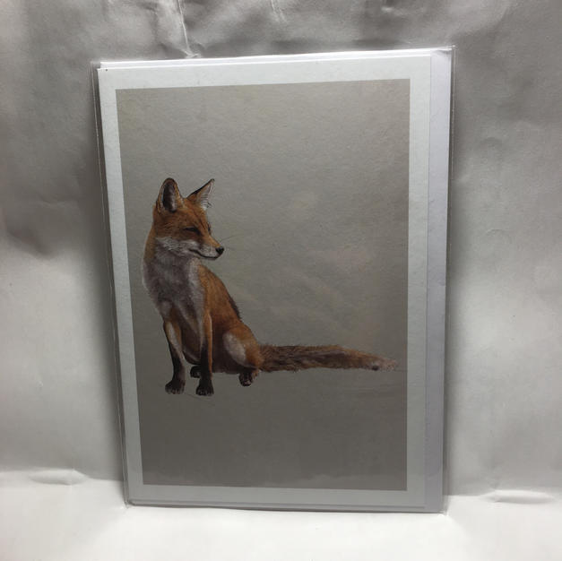 Fox on Grey - Notes & Queries