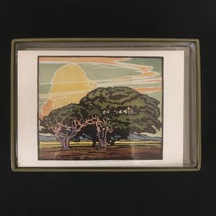 Del Monte Oaks - William S Rice