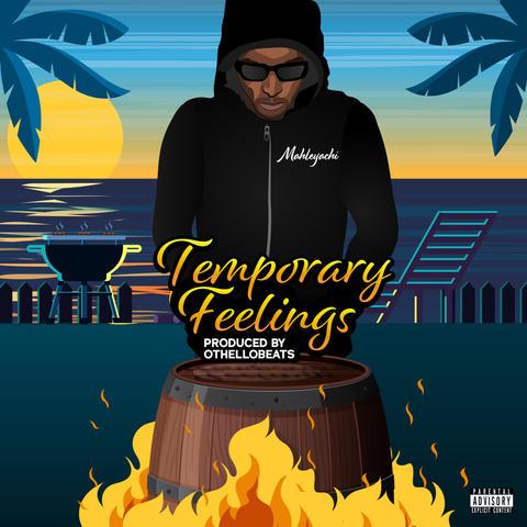 Official Temporary Feelings cover art-Pr